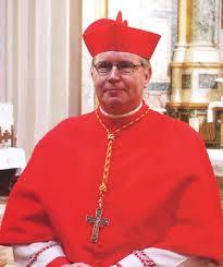 Cardinal Eijk, une encyclique sur le gender serait nécessaire