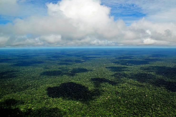Préoccupé, le pape souhaite un synode sur l'Amazonie