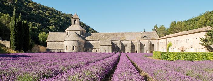 Visites à l'abbaye de Senanque – jusqu'au 30 septembre
