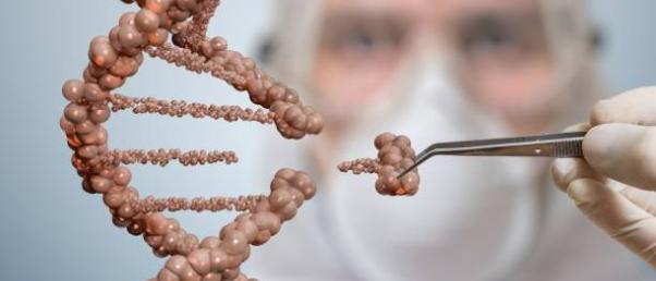 Prométhée  - La Relecture  de  La Loi  de  Bioéthique  en 2018 - Page 25 Crispr_adn_-_freeimages