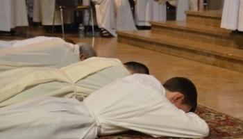 Trois ordinations sacerdotales dans le diocèse d'Avignon (84) le 24 juin 2018