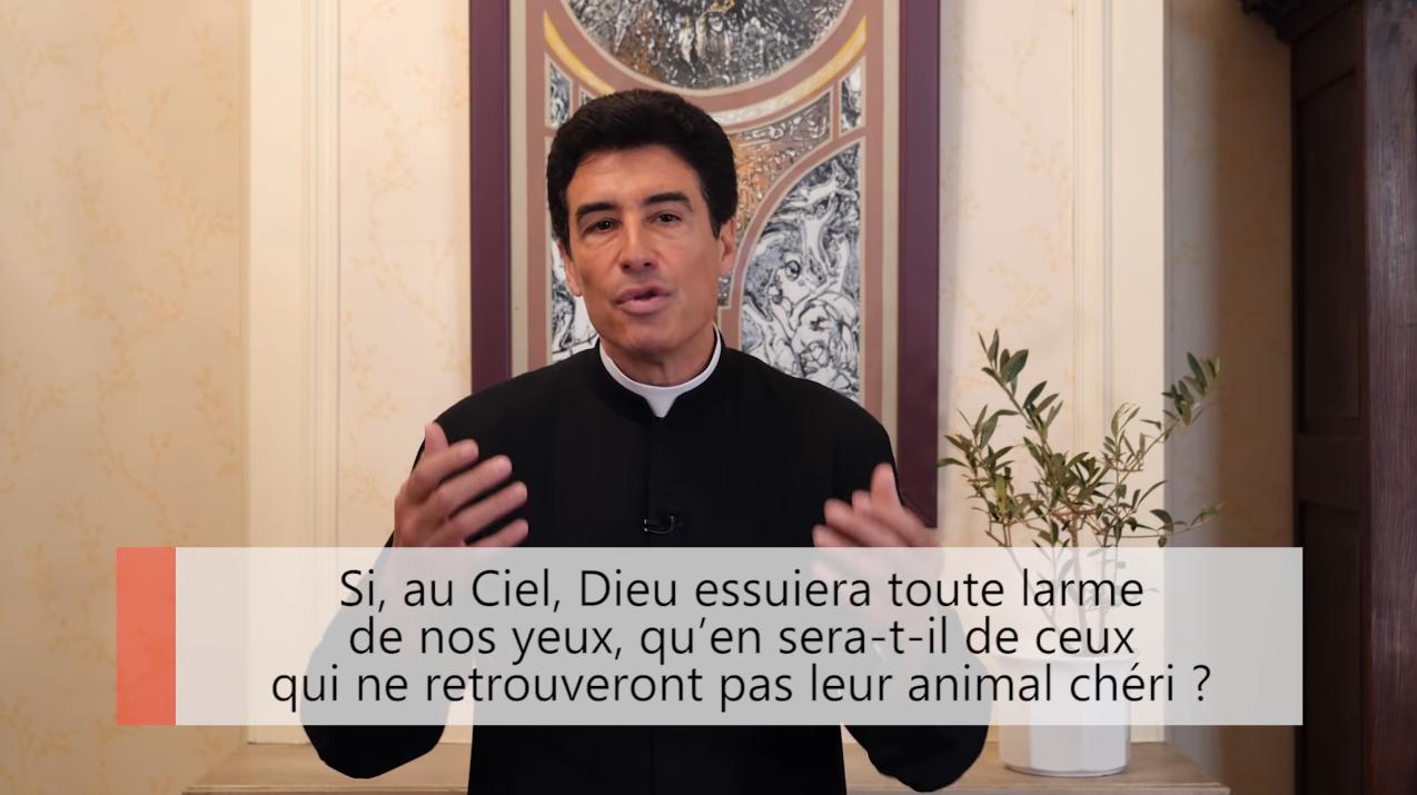"""Deux minutes pour vous #29 – Père Michel-Marie Zanotti-Sorkine – """"Si, au Ciel, Dieu essuiera toute larme de nos yeux, qu'en sera-t-il de ceux qui ne retrouveront pas leur animal chéri?"""""""