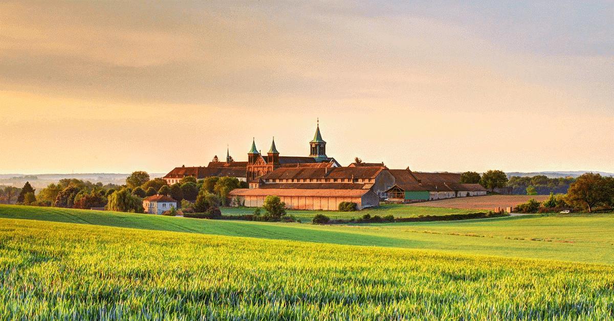 Abbaye d'Oelenberg: histoire, anecdotes et produits!